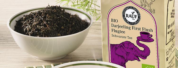 Bio Darjeeling First Flush Flugtee